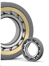 SKF insocoat NU 1011 ECP/C3VL0241 Electrically Insulated Bearings