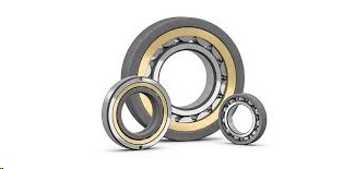 FAG Ceramic Coating 6313-M-J20AA-C5 Insulation on the inner ring Bearings