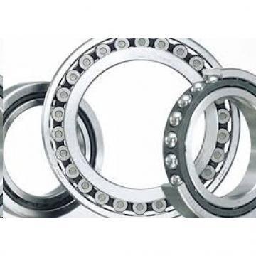 FAG Ceramic Coating NU219-E-M1-F1-J20B-C4 Insulation on the inner ring Bearings