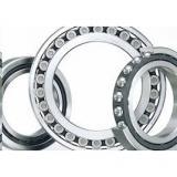 FAG Ceramic Coating F-808428.TR1-J20AA Insulation on the inner ring Bearings