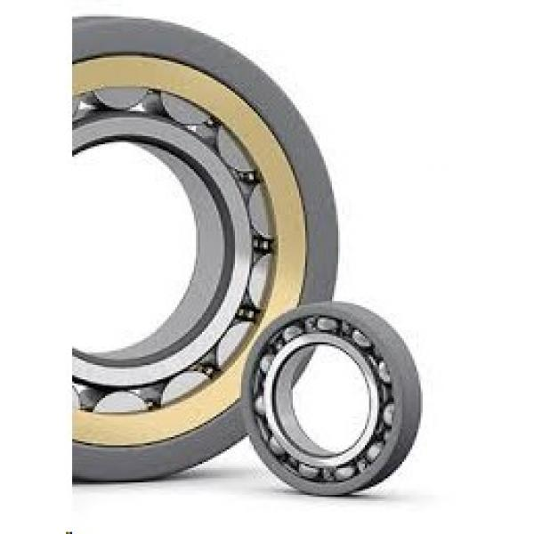 SKF insocoat NU 224 ECM/C3VL0241 Current-Insulated Bearings #1 image